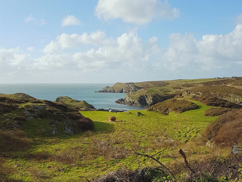 View of Porth Dafarch from the hills above