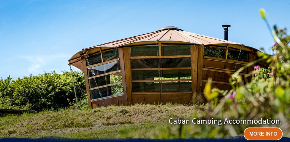 Two white traditional glamping yurts on a grass verge